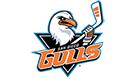San Diego Gulls tickets at Pechanga Arena San Diego, San Diego