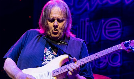 Walter Trout tickets at The Back Room @ Colectivo in Milwaukee