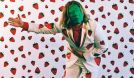 Ty Segall and The Freedom Band tickets at First Avenue in Minneapolis