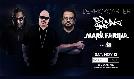 Derrick Carter, DJ Sneak, Mark Farina tickets at Webster Hall in New York